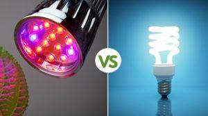 Grow lights VS Regular bulb