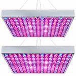 Quantum Board Vs COB LED Grow Lights