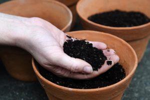 pot soil